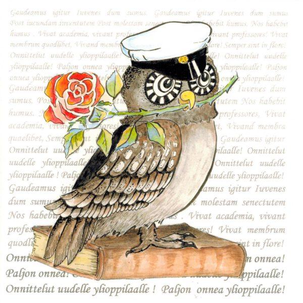 Taittokortti 'Yo-kortti Pöllö Gaudeamus'