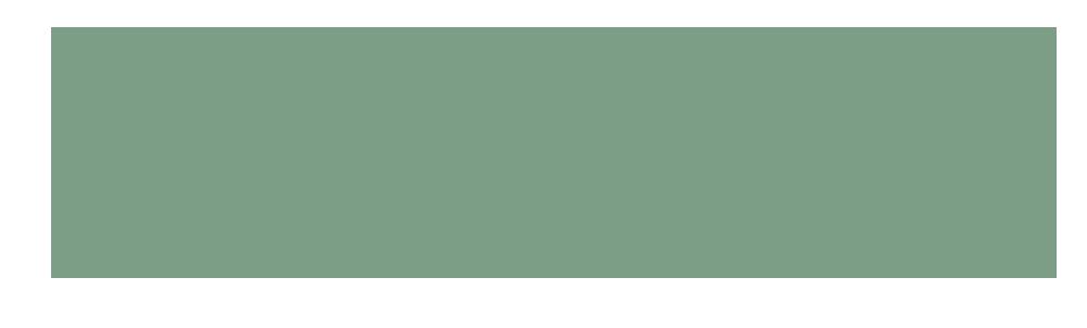 Havinan logo