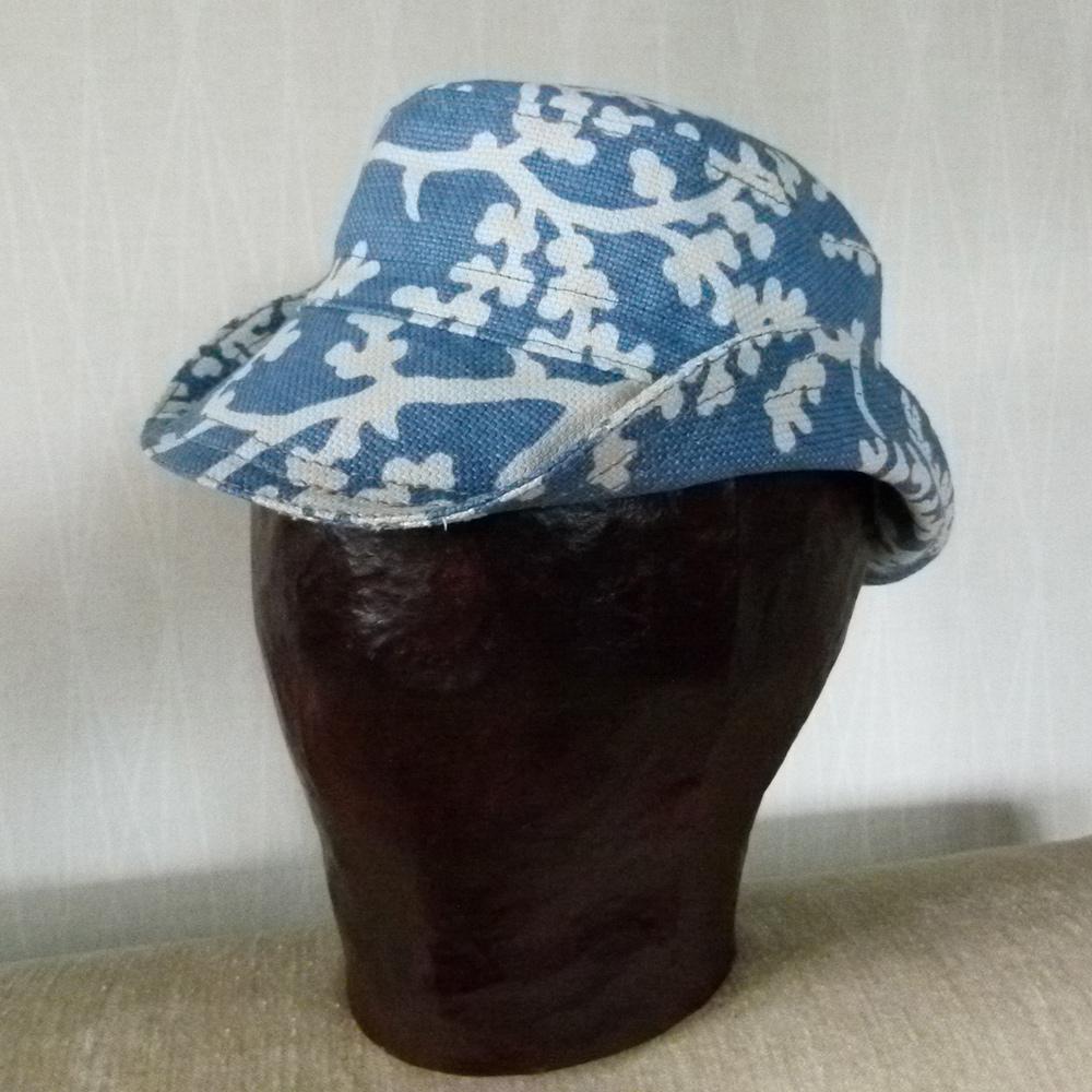 Hattu sinivalkoinen - Havinan